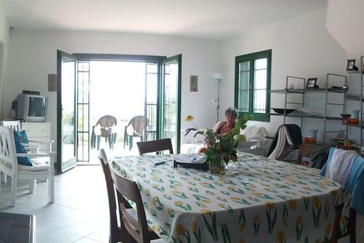 Unique house, lake & mountainview and own vineyard - Badacsonytomaj - Huis
