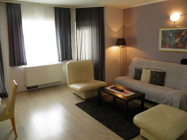 Apartman kod Dragane - Vrdnik - Appartement