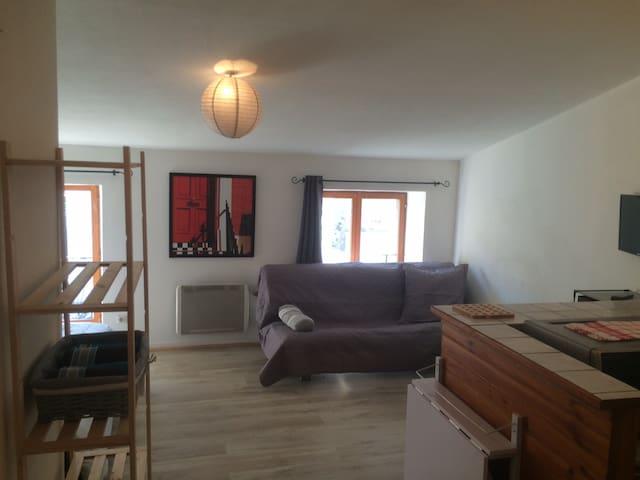 Studio 2/4 pers 5 min centre ville et gare - Le Puy-en-Velay - Apartament