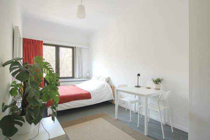 Spacious room in a split level apartment - Antwerpen - Lägenhet