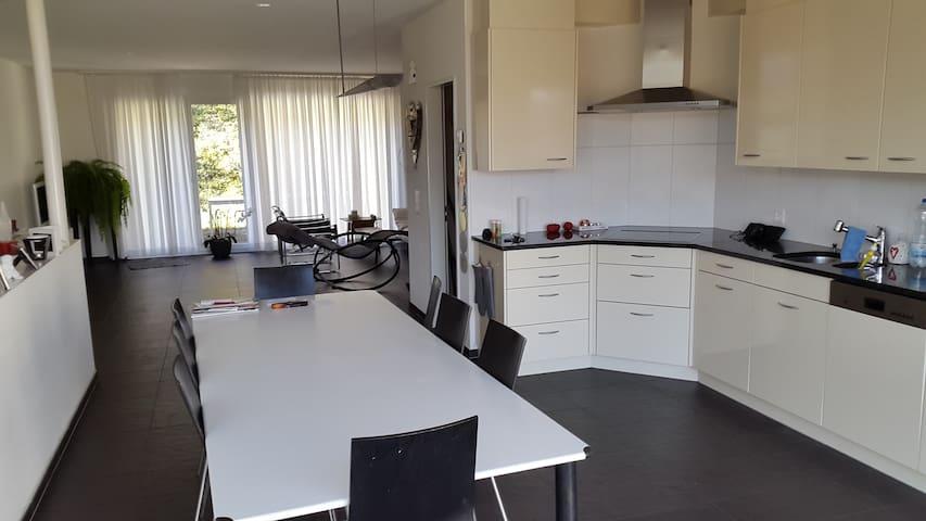 Modernes Haus mit Sauna! - Brugg - Huis