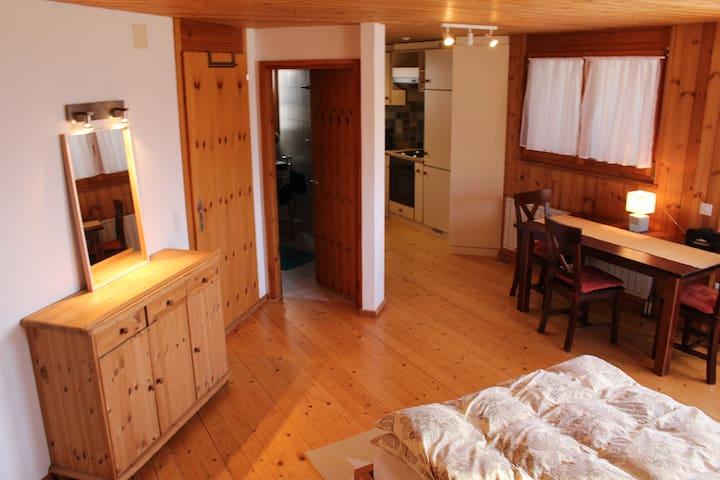 Wohnung im Herzen der Alpen inmitten des Rheintals - Schellenberg