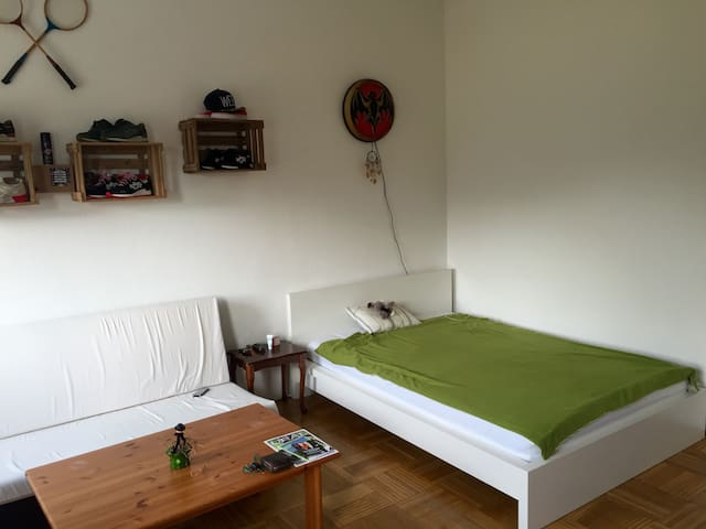 WG Zimmer 20 qm mit Münsterblick - Ulm - Daire