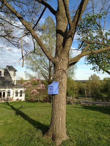 'The Garden Studio' Bucks Co./Doylestown/New Hope - Perkasie - Wohnung