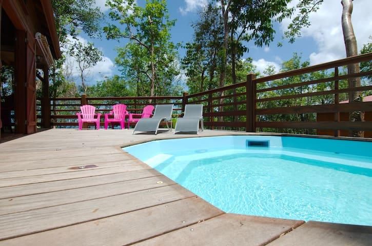House  in Bouillante -1/6 pers -private pool, BBQ - Bouillante - Bungalov