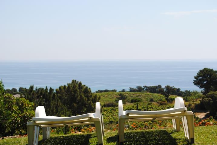 villa dans la vigne et sur la mer - Sari-Solenzara - Villa