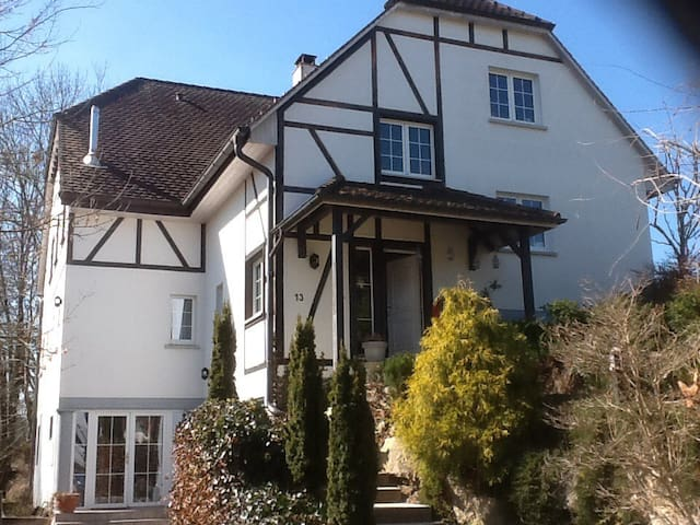 Large room in Alsace close to Basel - Leymen - Huis