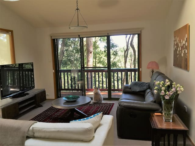 Tree house sanctuary - East Gosford - Hus