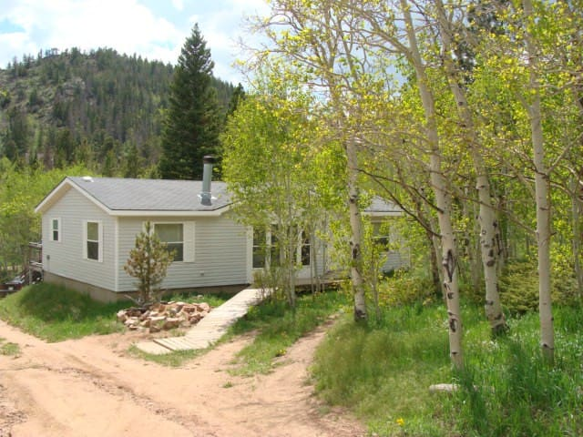 Black Bear Hollow is a dog friendly retreat! - Red Feather Lakes