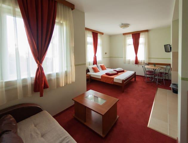 Studio apartment in Villa Larus*** - Palić - Departamento