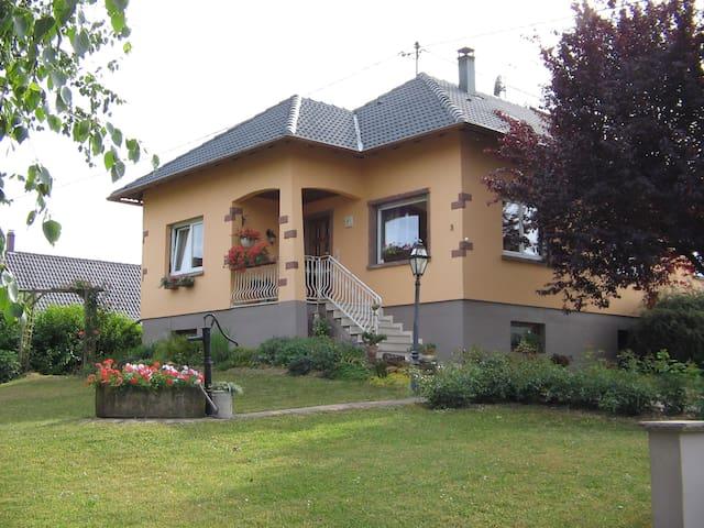 Sympatique Meublé du Tannenwald - Dimbsthal - Apartamento