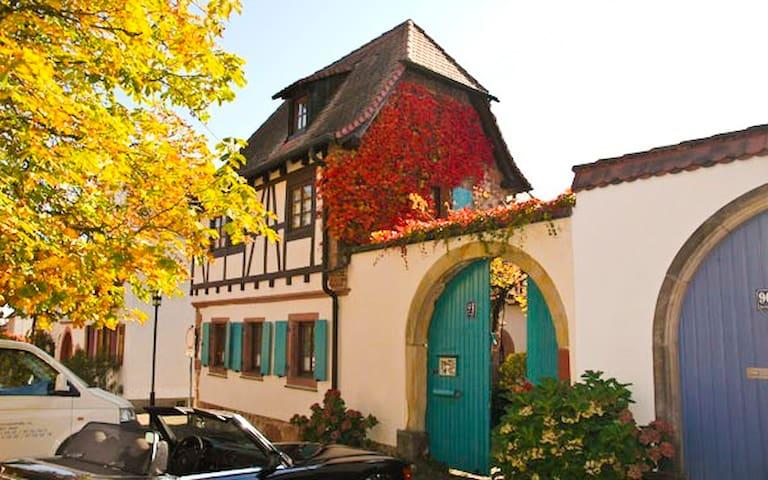 Romantischer, historischer Winzerhof - Rhodt - Rumah Tamu