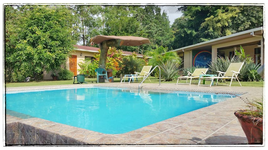 The Toucan Room - Vive Bien B&B/Wellness Center - Nuevo Arenal