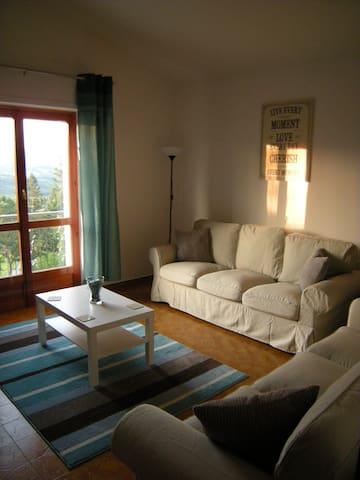 2 Bed apartment in Albareto - Case Mirani - Appartement