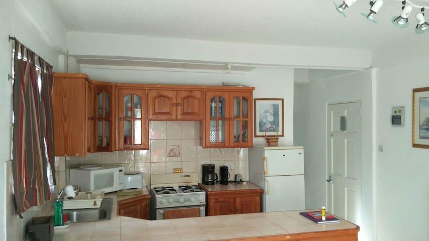 Point Saline Apartment - Saint George - Lejlighed