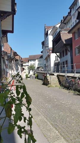 Schön hell, ruhig im Herzen Aarau - Aarau - Apartemen