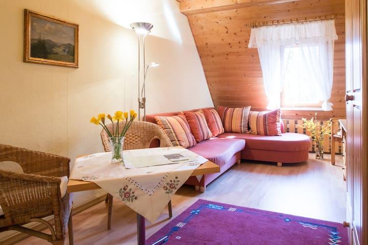 Ferienwohnung in Rittersgrün - Breitenbrunn/Erzgebirge - Apartemen