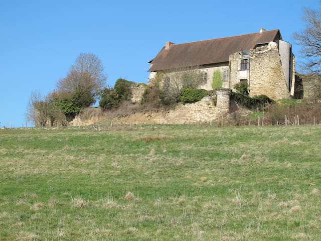 Stay in The Old Castle-cottage #1 - Vicq-sur-Breuilh - Castillo