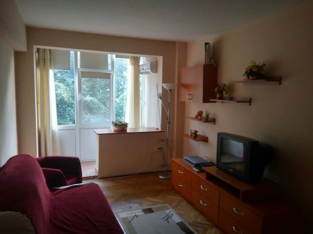 Quaint 5 min to City Center 1 Bedroom Apartment - Ploiești - Lägenhet