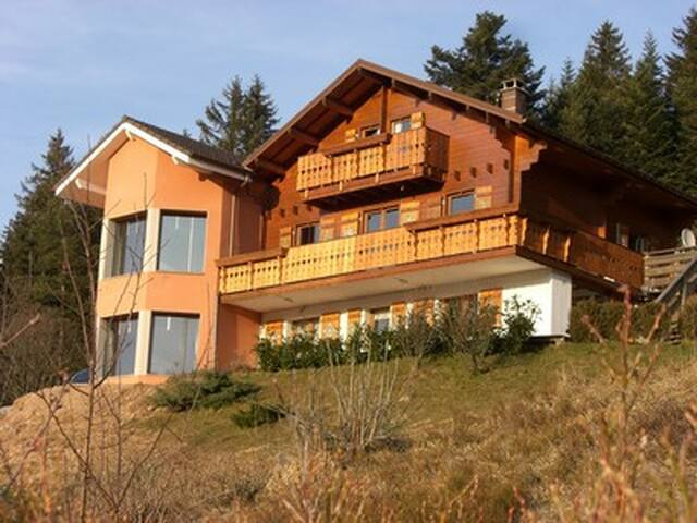 "Independent ""MAYA"" apartment in chalet. Top view! - Xonrupt-Longemer - Apartamento"