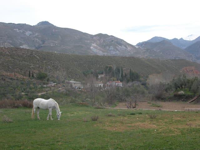House next to natural park S Nevada - Dílar