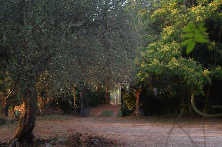 casa fondachello - Pietraperzia - Vila