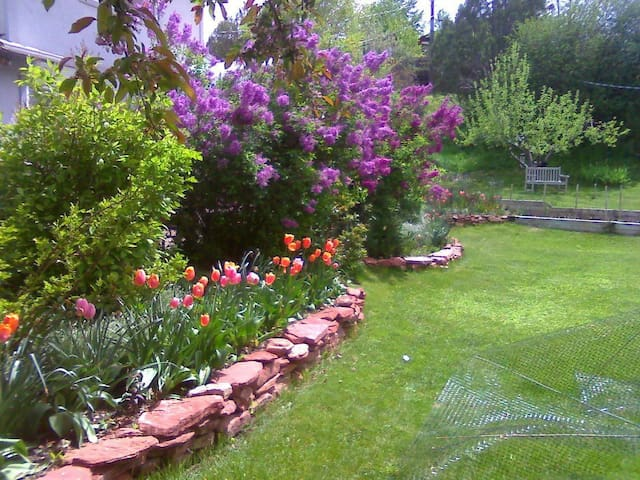 Cozy Gardens & Mountain Views 5 minutes from town. - Glenwood Springs - Ev