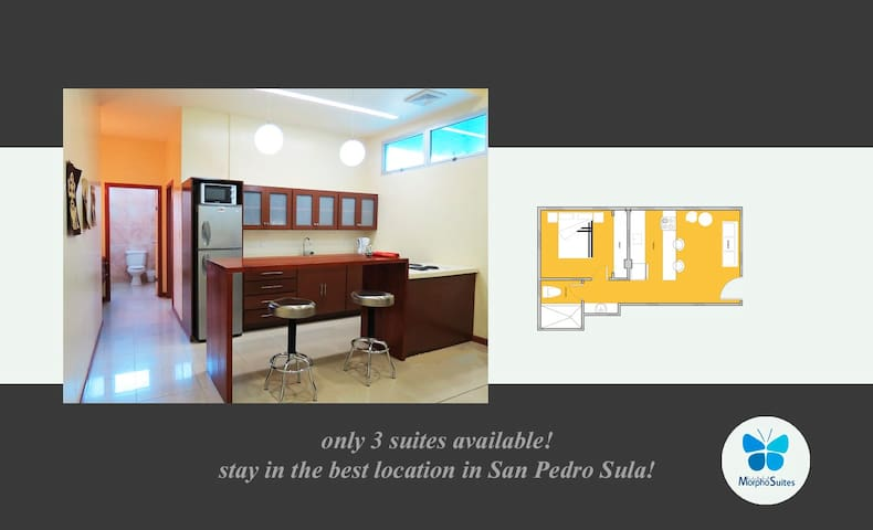 Executive-Suite. Fully furnished! - San Pedro Sula