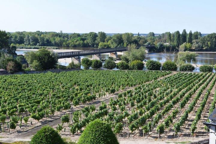 Vue sur la Loire et les vignes - Pouilly-sur-Loire - Appartement