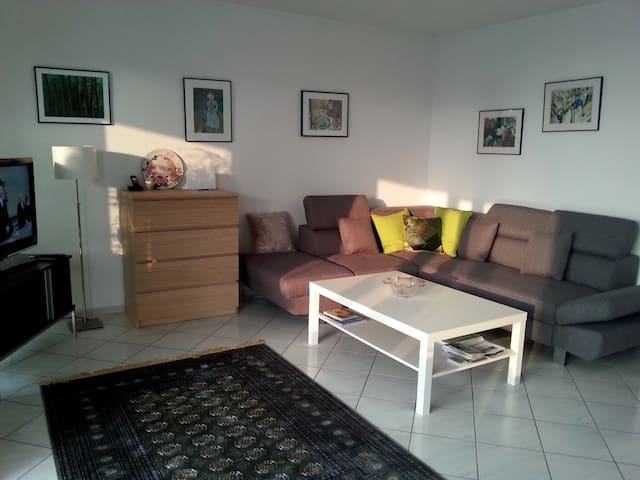 Dream Apartment near Frankfurt - Glashütten/Taunus - Departamento