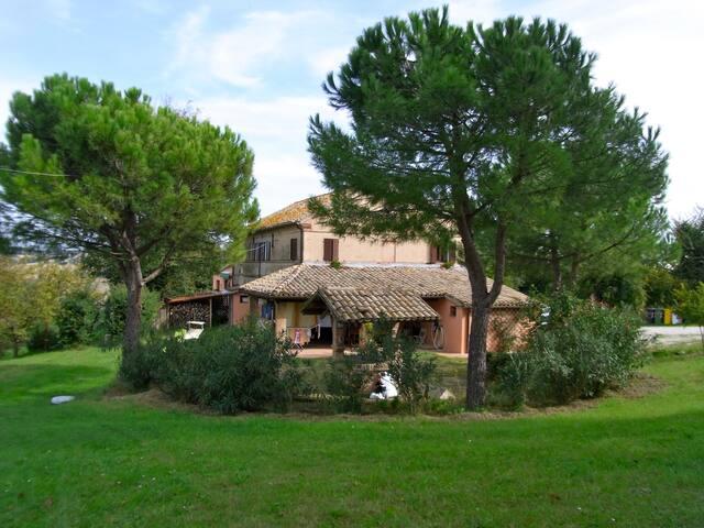"""Country House """"La Gioia""""  - trecastelli (castelcolonna) - 別荘"""