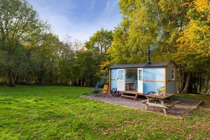 Wild woodland retreat shepherds hut - Elham - Diğer