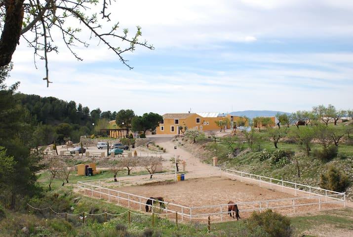 Finca Rural Las Lomas de Biar - Biar - Rumah Tamu
