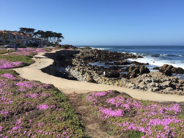 Peaceful Cozy Beach Bungalow (Lic#: 0213) - Pacific Grove - Casa