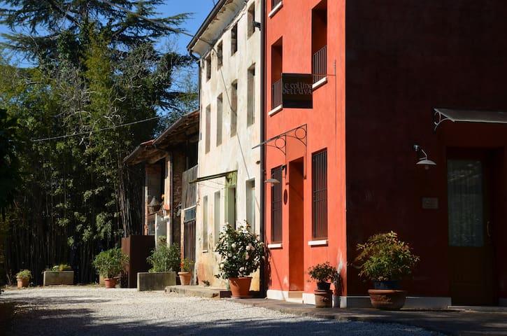 Country house on vineyard hills - Fara Vicentino - Casa