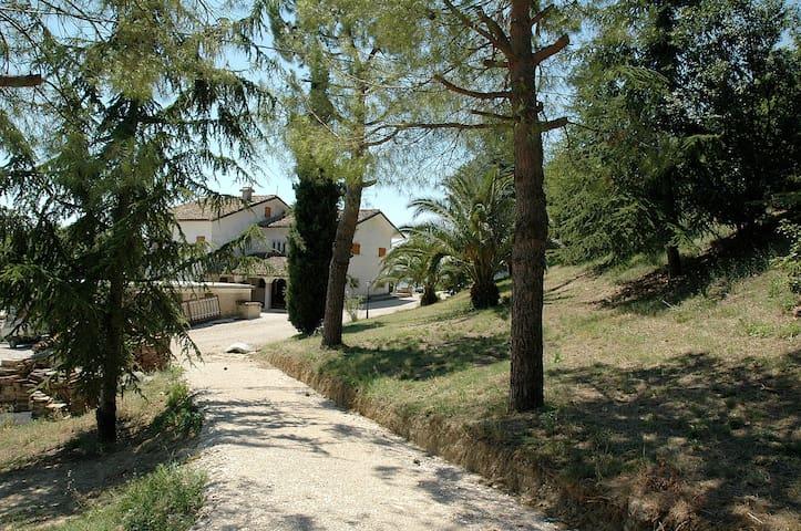 Agriturismo Le Palme - Servigliano - Casa
