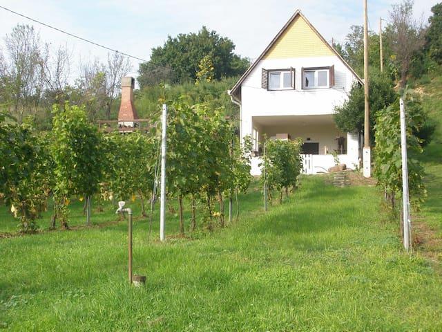 Szőlőskert Vendégház - Baj - Ev