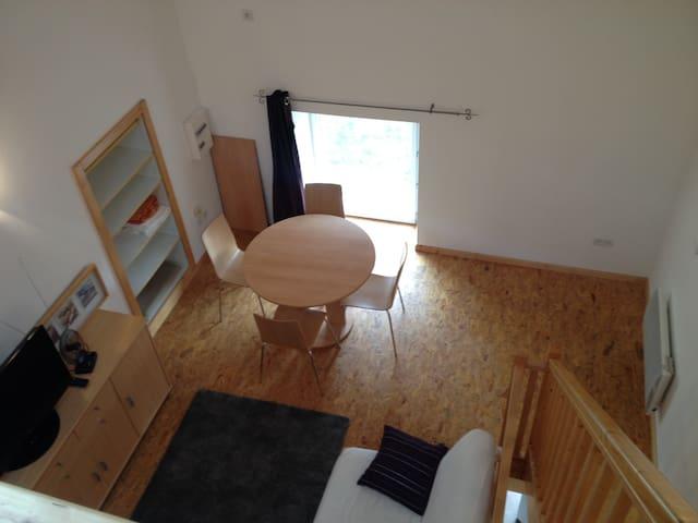 Grand studio mezzanine à 10km de Vienne - Moidieu-Détourbe - Apartamento
