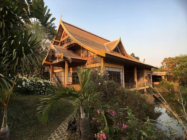 Jungle House  (dinner/b&b) - Vientiane - Casa