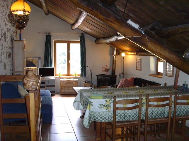Gite Figuier a la ferme - Saint Pons de Thomieres - Lägenhet