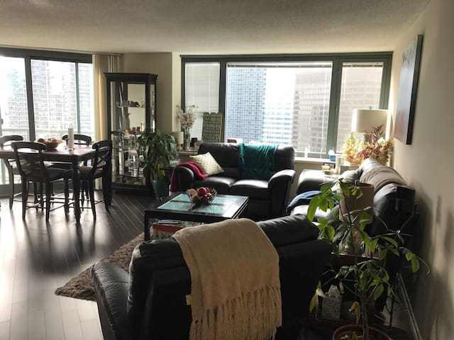 Warm &Cosy Loft with amazing view in Streeterville - Chicago - Wohnung