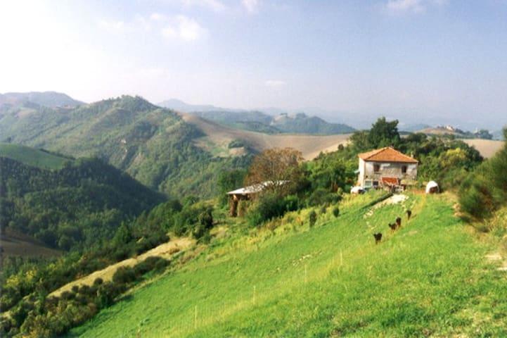 "Double ""NOBLESSE""  in beautiful Montefeltro Area - Sassocorvaro - Bed & Breakfast"