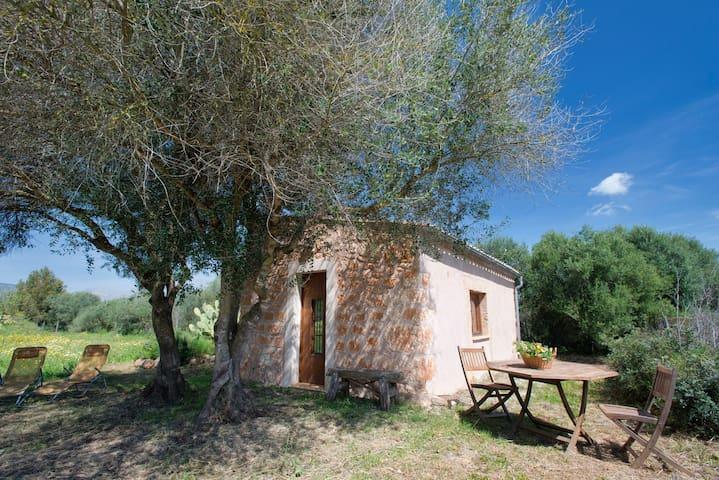 Can Xeu - binissalem - Casa
