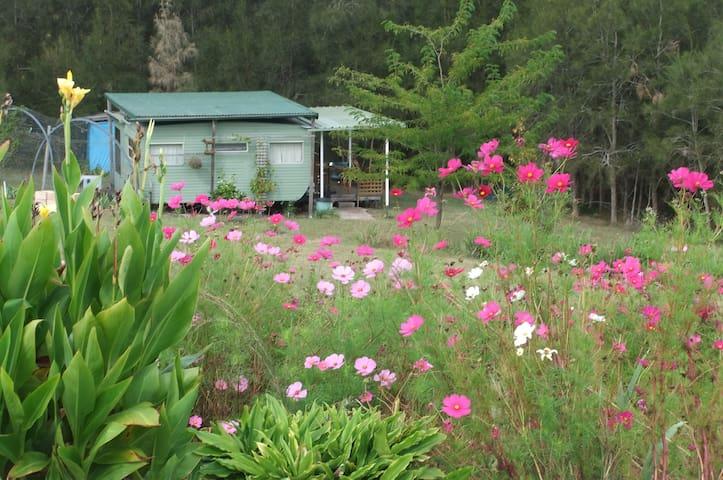 COILA LAKE SAPPHIRE COAST NSW AUST. - Bingie - Cabin