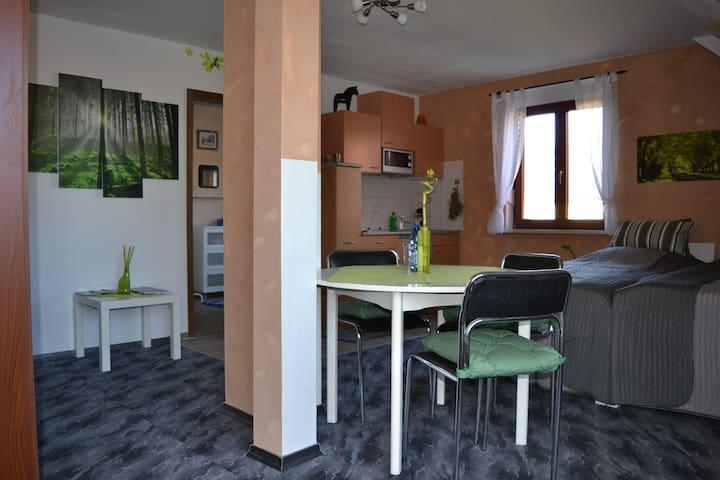 Holiday apartment at historic farm - Wermsdorf