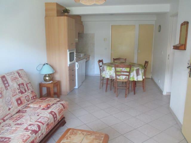 Appartement du Serre - Puy-Saint-Vincent - 公寓
