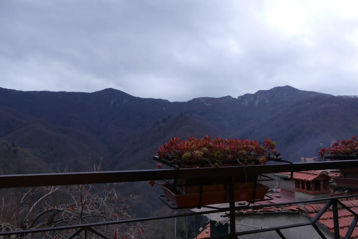 """Relax in """"Alta Versilia"""": between mountain and sea - Stazzema - Huis"""