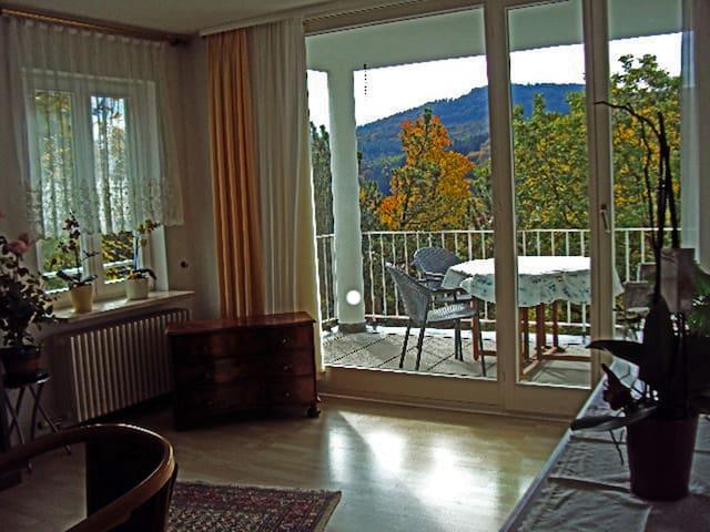 2 1/2 Zi. Nichtraucherwohnung 60qm - Baden-Baden - Apartemen