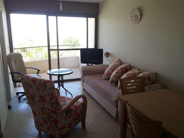 Shoresh view apartment - Shoresh - Apartamento