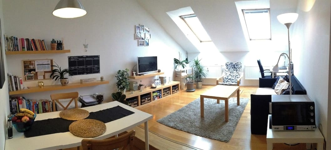 Cozy attic apartment in city center - Brünn
